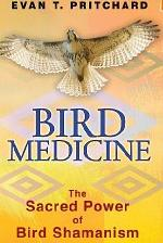 Bird Medicine by Evan T. Pritchard